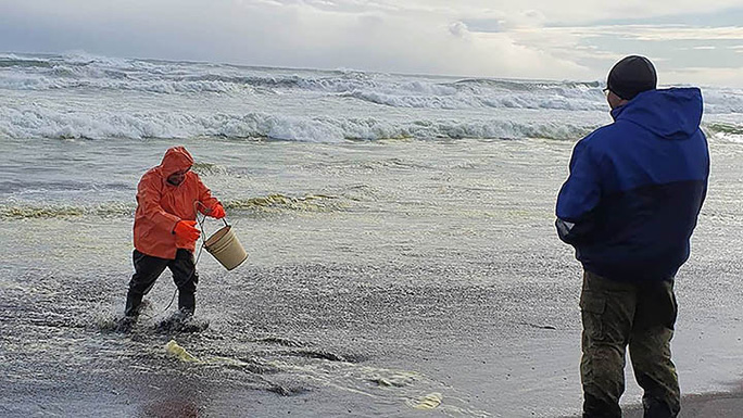 Tham hoa Kamchatka - Nga: Gan nhu tat ca su song duoi day bien bi xoa so