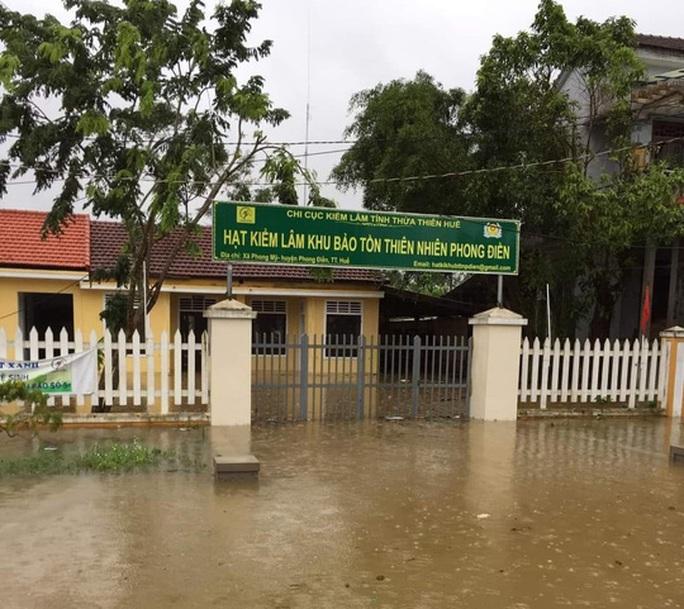 Quảng Trị: Mưa lũ làm 5 người chết và mất tích, di dời khẩn cấp hàng ngàn hộ dân - Ảnh 9.