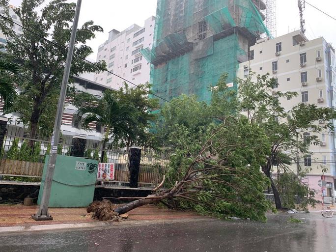 Xuất hiện đợt lũ ở mức trên dưới báo động III tại Khánh Hòa, Phú Yên - Ảnh 5.