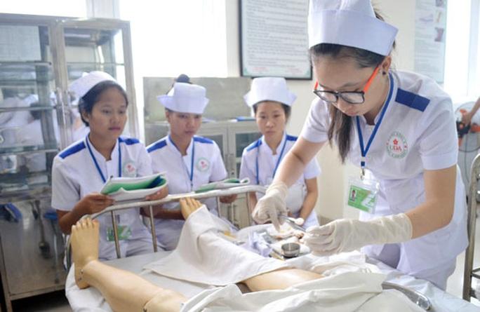 Nhật Bản đánh giá cao điều dưỡng, hộ lý Việt Nam - Ảnh 1.