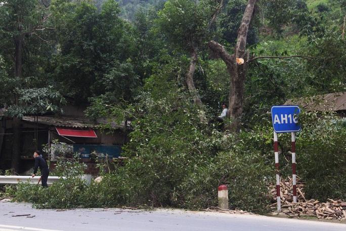 Chùm ảnh:  Quảng Trị chạy đua sơ tán dân trước khi bão số 13 đổ bộ - Ảnh 3.