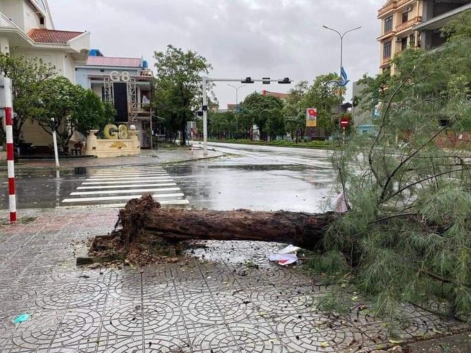 CLIP: Những thiệt hại ở Quảng Bình sau bão số 13 đi qua - Ảnh 3.