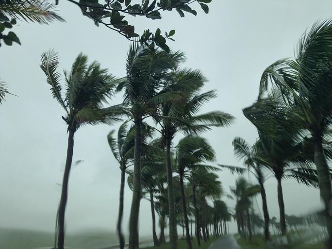 Bão số 13 đổ bộ Quảng Bình, gió giật liên hồi, người dân gồng mình chống chịu - Ảnh 2.