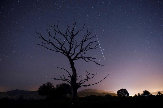 Đêm nay, Việt Nam đón cực đỉnh mưa sao băng Sư Tử bầu trời - Ảnh 2.