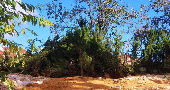 Vụ lấn chiếm hơn 1.000 m2 đất vàng ở trung tâm Đà Lạt: Chờ chủ đầu tư tháo dỡ! - Ảnh 3.