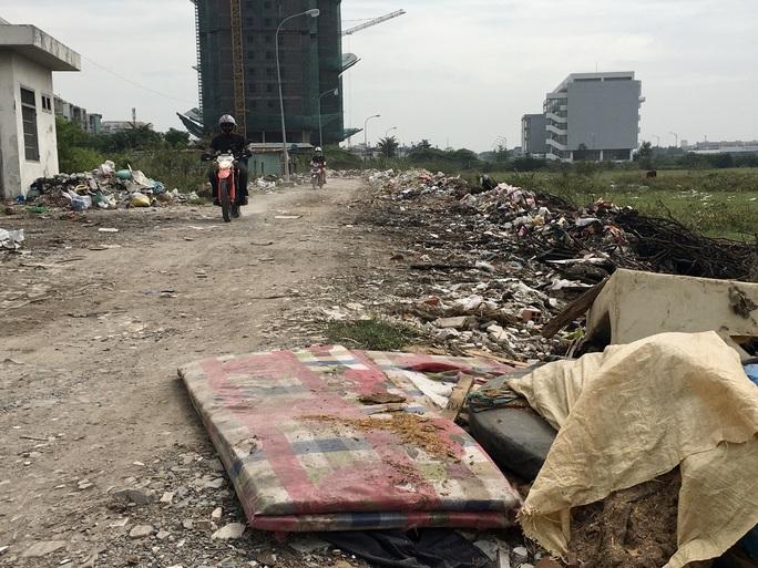 Cận cảnh hàng trăm tấn rác tấn công Khu tái định cư 38 ha ở quận 12 - Ảnh 3.