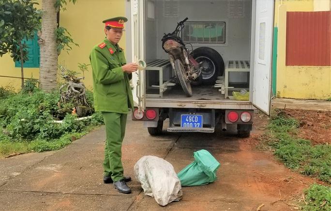 Bắt tạm giam đối tượng phá rừng ở Lâm Đồng - Ảnh 2.