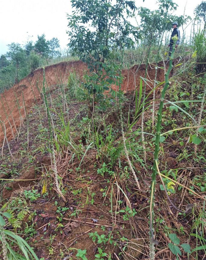 Quảng Trị: Vết nứt khủng xuất hiện trên đồi, người dân xã Húc rùng mình khi qua lại - Ảnh 3.