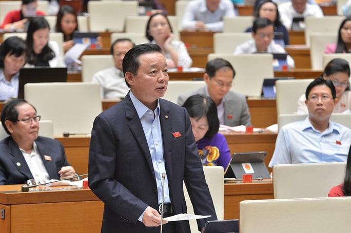 Bộ trưởng TN-MT Trần Hồng Hà nói về dự án lấn biển Cần Giờ - Ảnh 1.