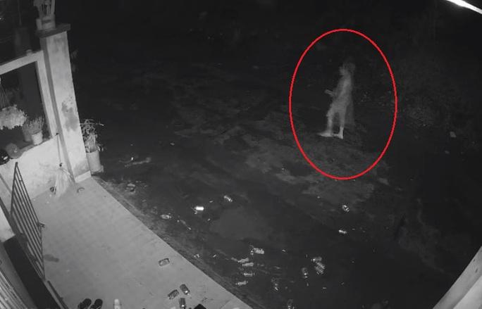 Truy tìm tài xế tông chết người phụ nữ trong đêm - Ảnh 1.