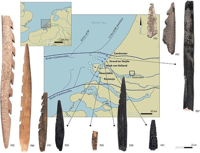 Bí ẩn hài cốt người 7.500 tuổi đầy răng cưa dạt vào bờ biển - Ảnh 1.