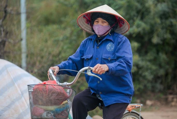 CLIP: Cận cảnh người dân làng đào Nhật Tân nhộn nhịp tuốt lá đào chuẩn bị dịp tết - Ảnh 14.