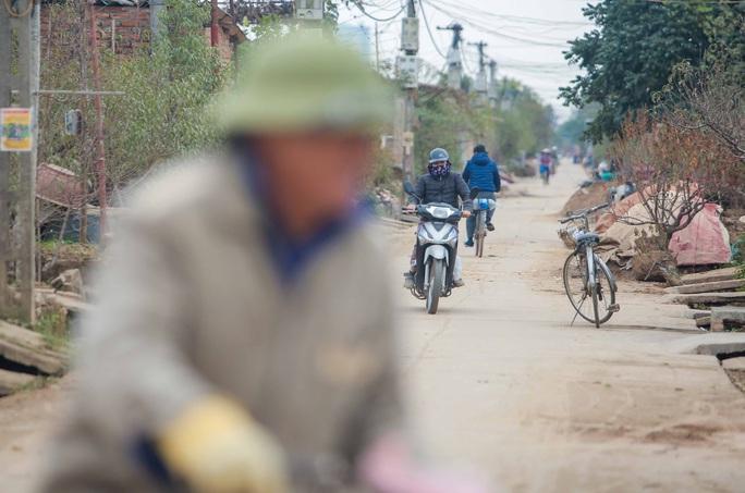 CLIP: Cận cảnh người dân làng đào Nhật Tân nhộn nhịp tuốt lá đào chuẩn bị dịp tết - Ảnh 13.