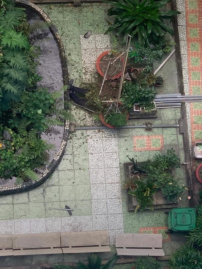 Cựu sinh viên rơi lầu tử vong tại Trường ĐH Ngoại ngữ - Tin học TP HCM - Ảnh 1.