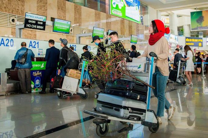 Hàng không nhận vận chuyển cành đào, cành mai Tết giá 495.000 đồng/bó - Ảnh 1.