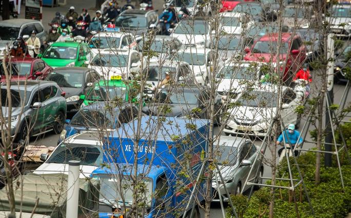 """CLIP: Cận cảnh hàng cây phong lá đỏ chết khô trên con đường """"đẹp nhất Việt Nam"""" - Ảnh 6."""