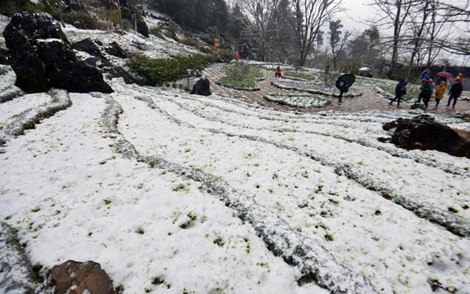Miền Trung 7 người chết vì mưa lũ, miền Bắc rét đậm, rét hại - Ảnh 1.