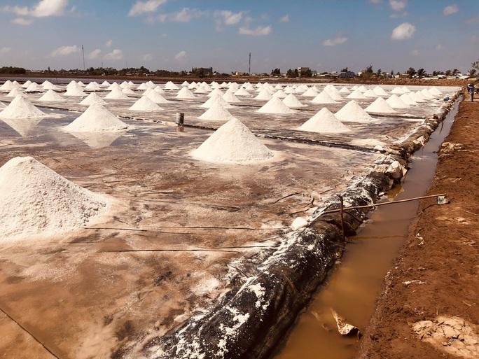 Nghề làm muối ở Bạc Liêu: Di sản văn hoá phi vật thể quốc gia - Ảnh 1.