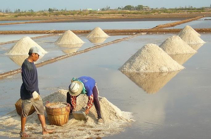 Nghề làm muối ở Bạc Liêu: Di sản văn hoá phi vật thể quốc gia - Ảnh 3.