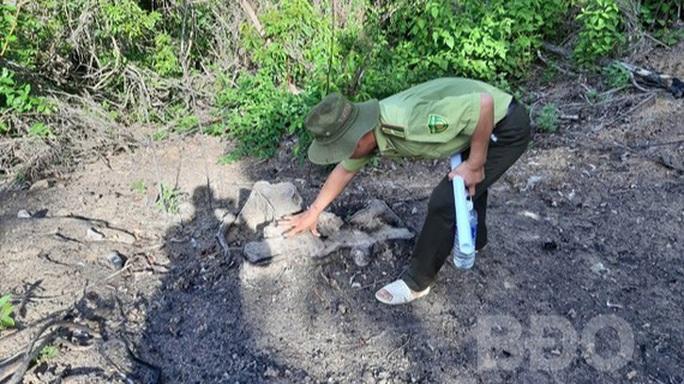 Để xảy ra phá rừng, kiểm lâm địa bàn bị kiểm điểm rút kinh nghiệm - Ảnh 1.