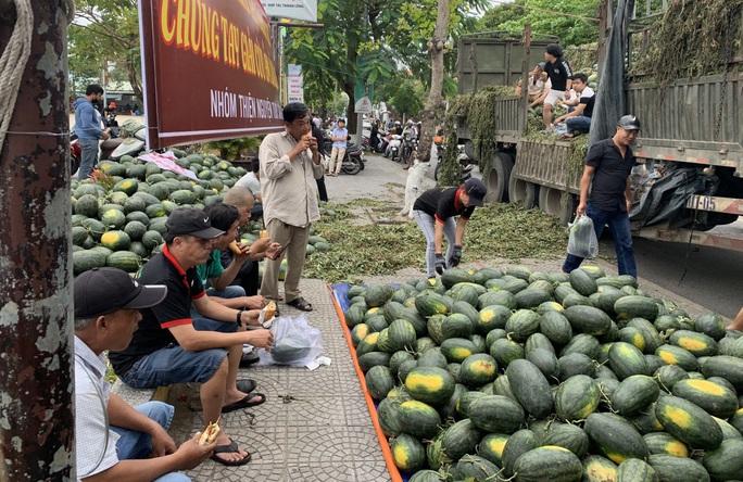 Một buổi sáng, người Hội An giải cứu hơn 7 tấn dưa hấu bí đường sang Trung Quốc - Ảnh 2.