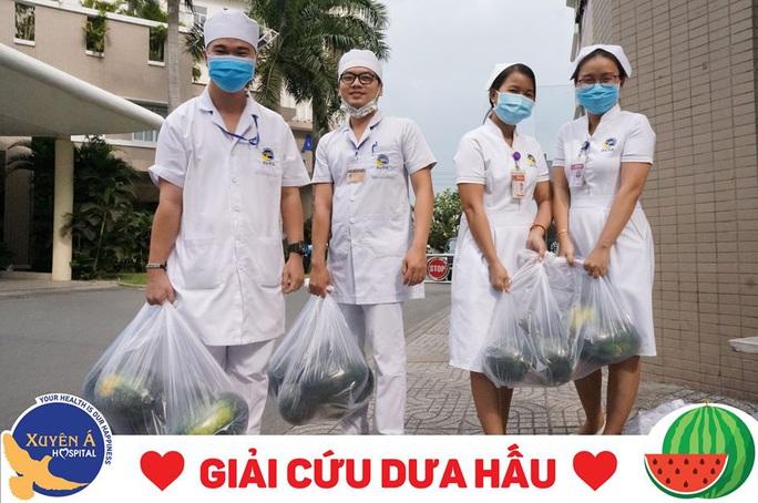 Vạ lây dịch corona, bác sĩ TP HCM giải cứu dưa hấu cho nông dân Tây Nguyên - Ảnh 1.