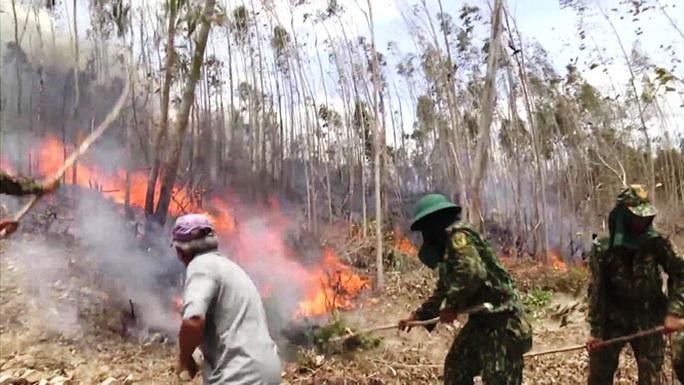 Nguy cơ cháy rừng uy hiếp nhiều tỉnh - Ảnh 1.