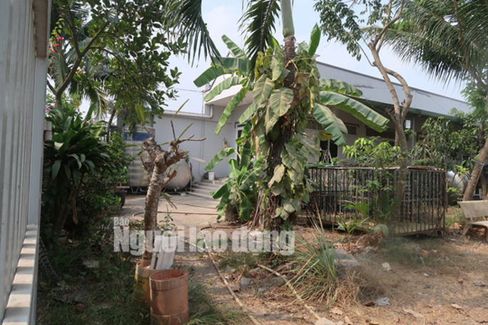 CLIP: Nhiều người đột nhập căn nhà hoang nơi Tuấn khỉ từng ẩn náu - Ảnh 15.