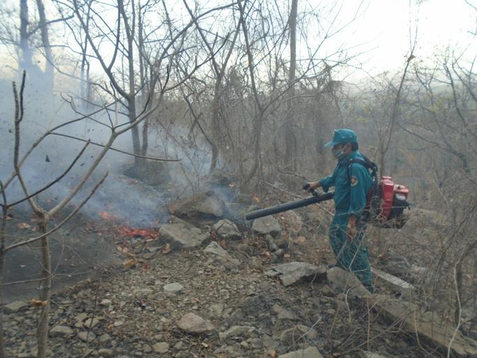 Bình Thuận: Rừng Tà Cú phát cháy - Ảnh 1.