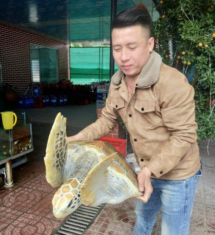 Chủ nhà hàng nói mua rùa biển quý hiếm nặng 30 kg để thả về biển - Ảnh 2.