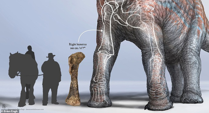 Lộ diện giữa công viên quái vật chỉ xương đùi đã to hơn con người - Ảnh 3.