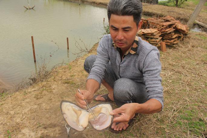 Kho ngọc chục tỉ nằm dưới ao ở huyện M'Đrắk, tỉnh Đắk Lắk - Ảnh 2.