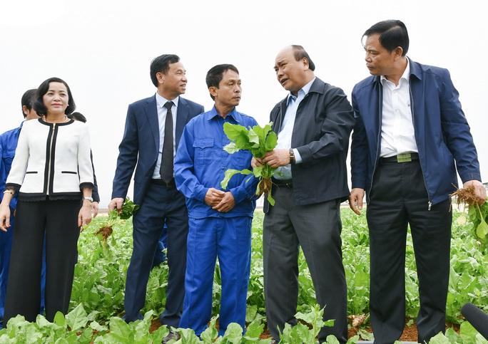 Nông nghiệp cần cởi trói chính sách - Ảnh 1.