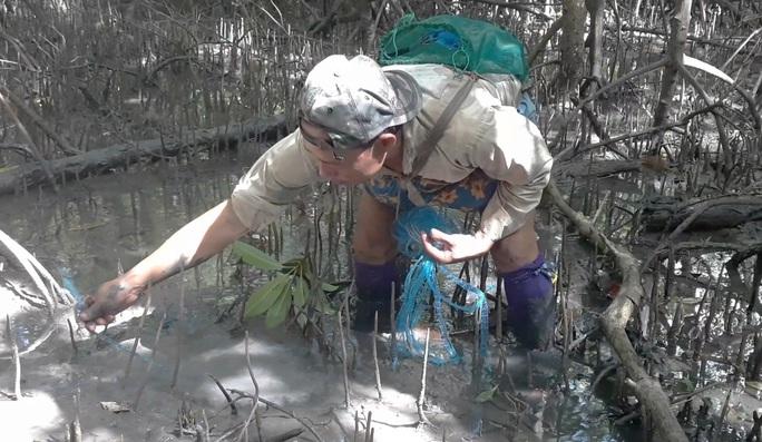 CLIP: Săn bắt loài cá biết leo cây đang dần cạn kiệt ở Cà Mau - Ảnh 10.