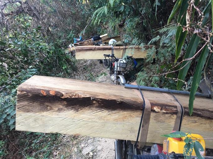 Vụ đoàn lâm tặc rầm rộ đưa gỗ ra khỏi rừng: Tiếp tục bắt 13 xe chở gỗ - Ảnh 1.