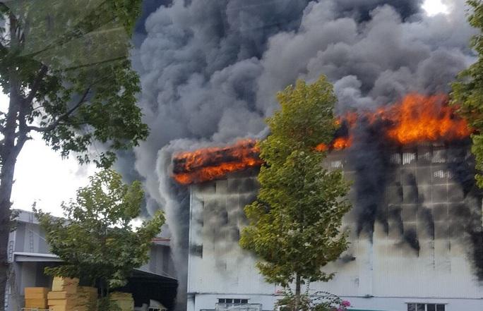 Đang cháy dữ dội ở thị xã Bến Cát - Bình Dương, khói mù trời - Ảnh 1.