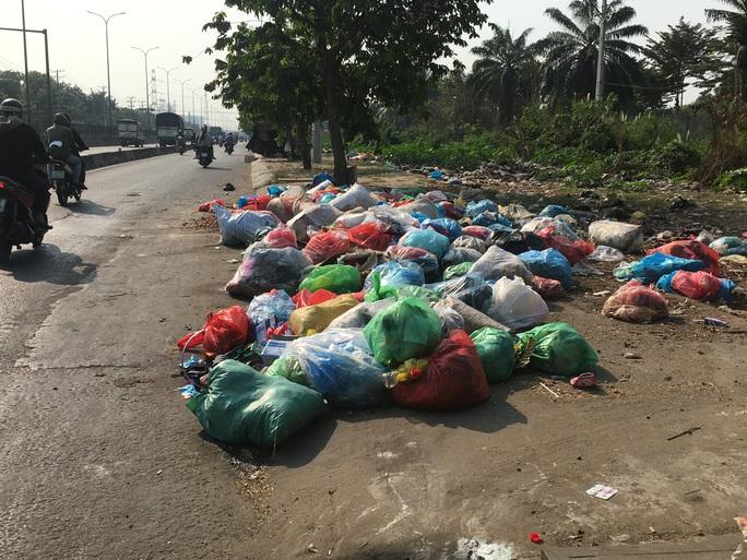 Kinh khủng bãi rác tự phát ở quận Bình Tân - TP HCM - Ảnh 2.