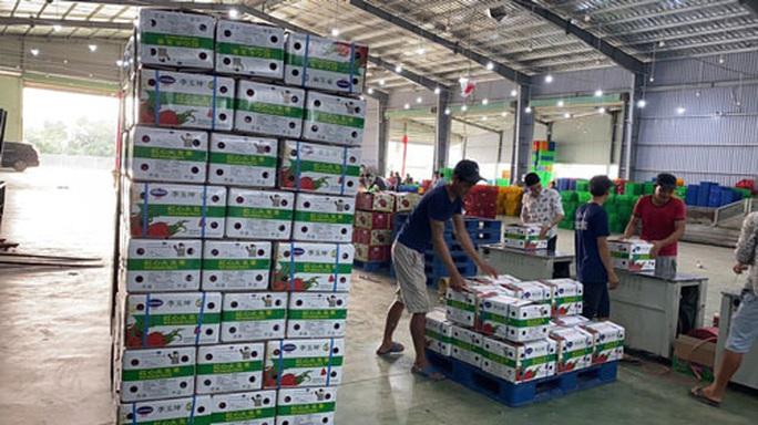 Dự kiến thông quan nông sản qua cửa khẩu Tân Thanh - Ảnh 1.