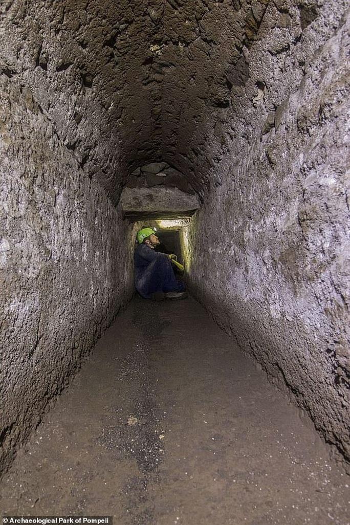 Sốc với thứ duy nhất sống sót trong thành phố bị núi lửa chôn vùi 2.000 năm - Ảnh 1.