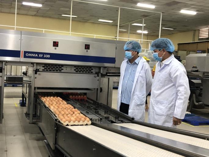 Bí thư Tỉnh ủy Đồng Tháp dẫn đoàn nông dân lên TP HCM tìm nơi tiêu thụ trứng vịt - Ảnh 2.