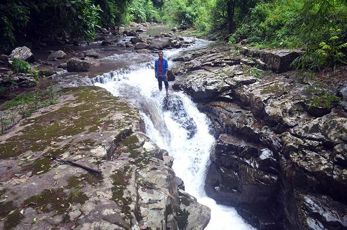 Điều gì tại khu rừng thiêng 300ha ở Quảng Ninh khiến lâm tặc sợ đến khiếp vía? - Ảnh 3.