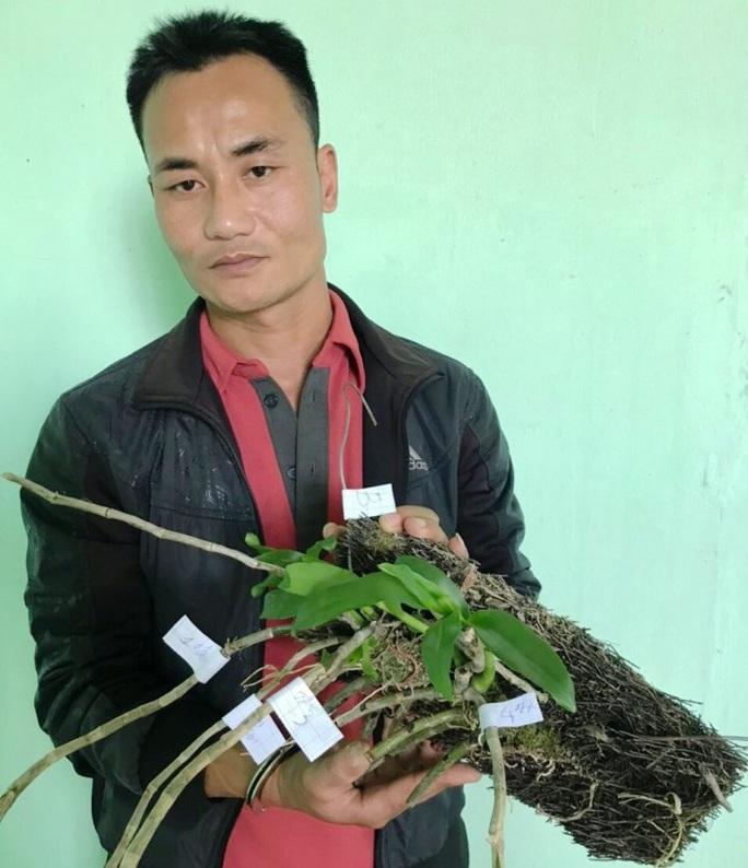 Bắt nhóm đối tượng trộm vườn lan đột biến tiền tỉ khiến ông chủ nhập viện cấp cứu - Ảnh 1.
