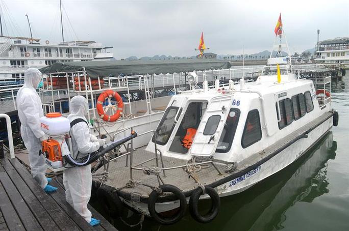 9 người ở Hải Phòng đi trên chuyến bay VN0054 có nữ tiếp viên mắc Covid-19 - Ảnh 1.