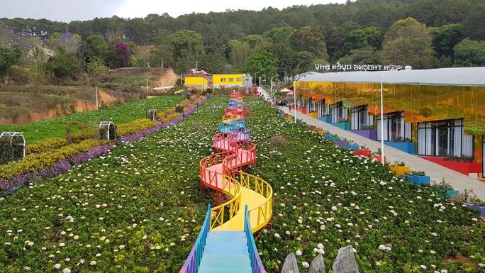 Cận cảnh vườn thượng uyển bay khổng lồ không phép ngay cửa ngõ Đà Lạt - Ảnh 6.