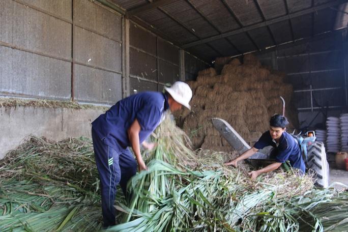 Agribank tiếp sức nhà nông mùa dịch Covid-19 - Ảnh 1.