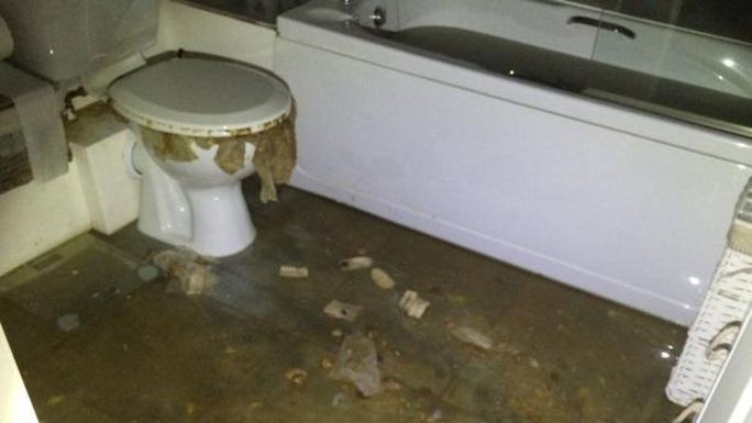 Tác hại bất ngờ của cuộc khủng hoảng giấy vệ sinh - Ảnh 2.