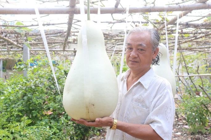 Lạ lùng những trái bầu siêu to, khổng lồ nặng từ 15-30 kg - Ảnh 2.