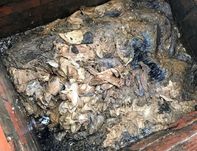 Tác hại bất ngờ của cuộc khủng hoảng giấy vệ sinh - Ảnh 1.