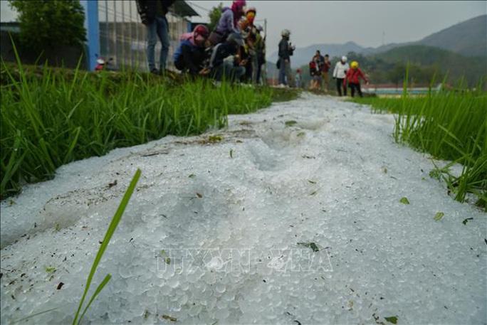 Mưa đá rơi trắng như tuyết tại Điện Biên - Ảnh 2.