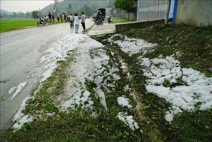Mưa đá rơi trắng như tuyết tại Điện Biên - Ảnh 12.